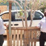 Entrega Santos otra obra de electrificación en la Topahue