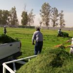 Destacan mantenimiento en estadios del valle